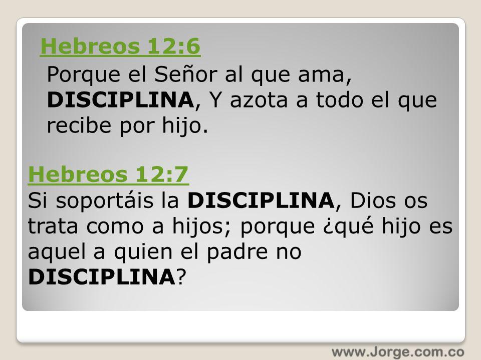 Hebreos 12:6 Porque el Señor al que ama, DISCIPLINA, Y azota a todo el que recibe por hijo.