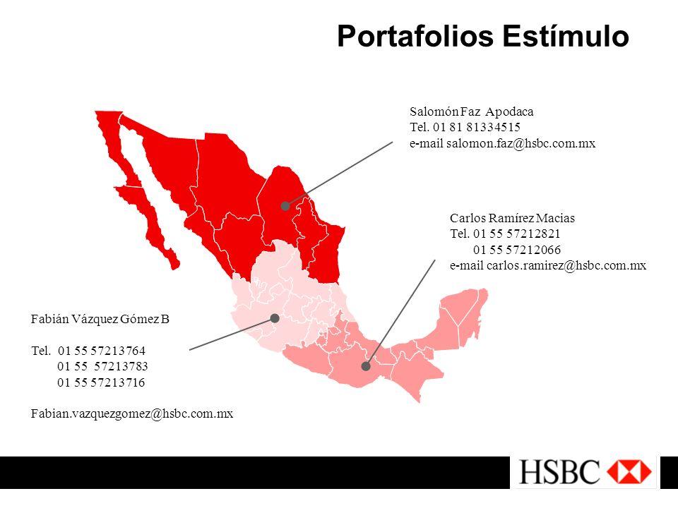 Portafolios Estímulo Salomón Faz Apodaca Tel. 01 81 81334515