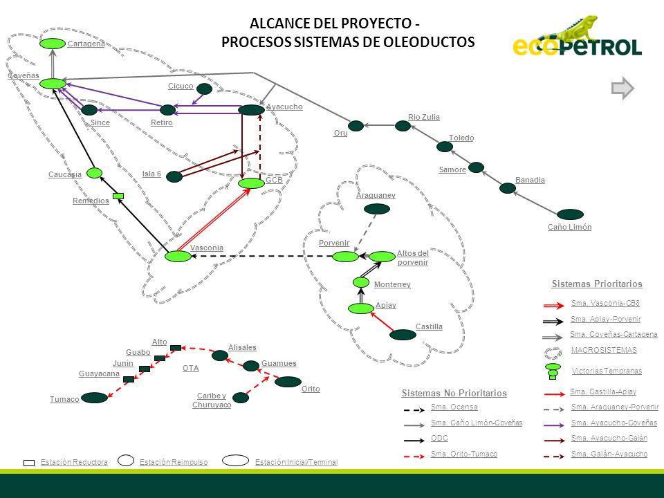 ALCANCE DEL PROYECTO - PROCESOS SISTEMAS DE OLEODUCTOS