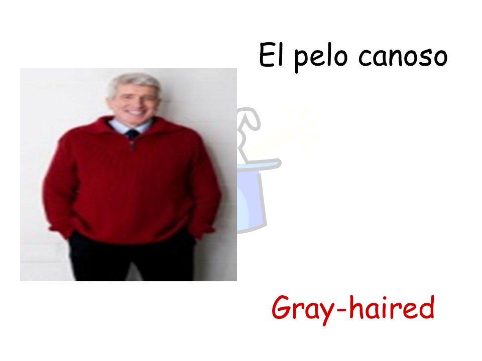 El pelo canoso Gray-haired