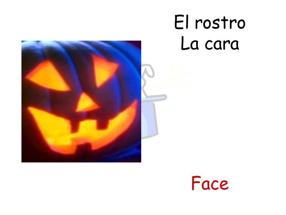 El rostro La cara Face