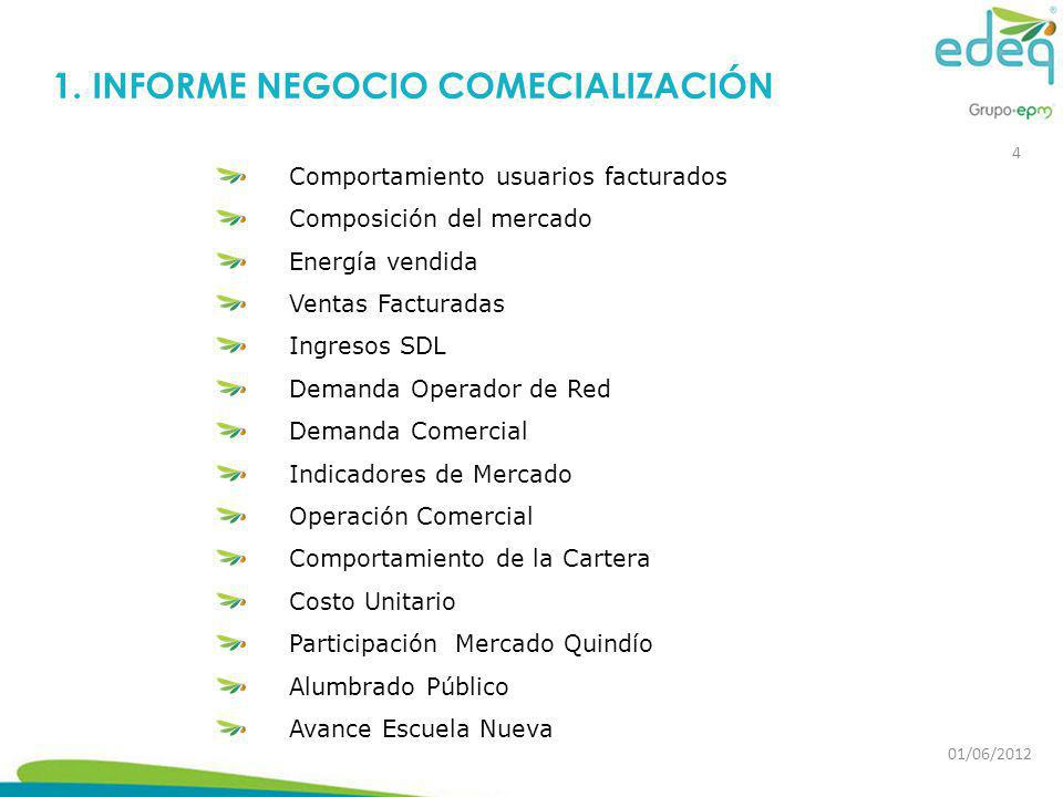 1. INFORME NEGOCIO COMECIALIZACIÓN