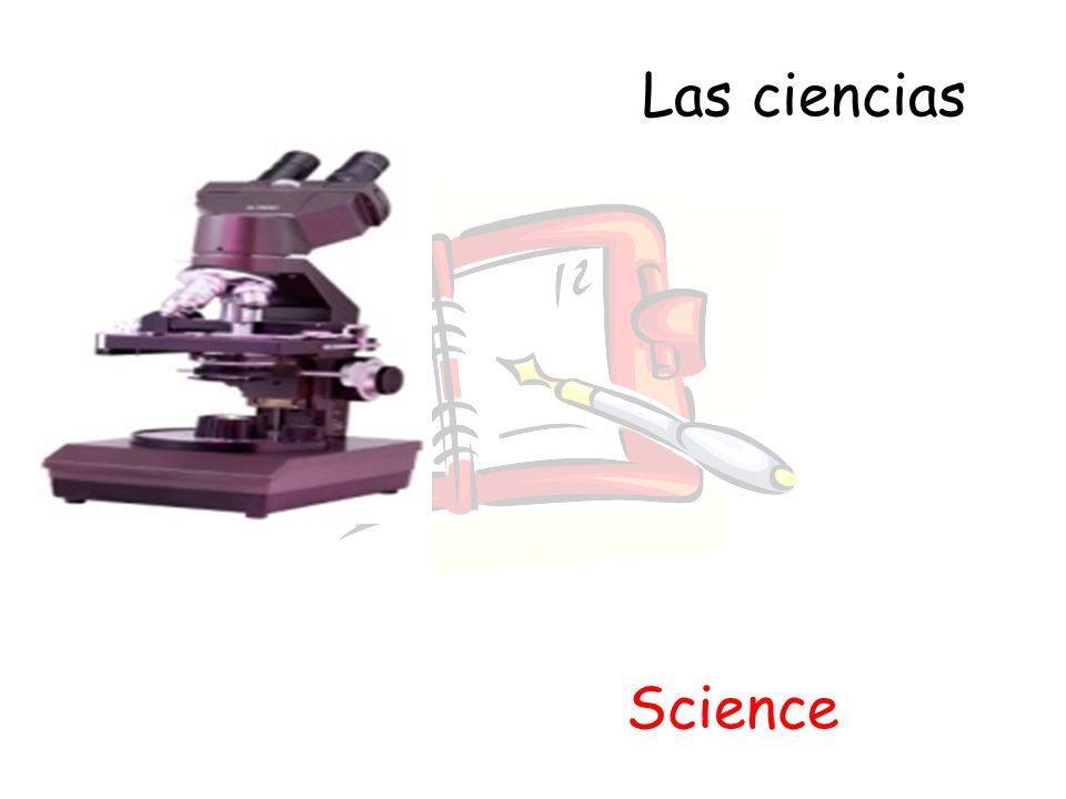 Las ciencias Science