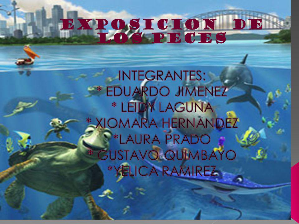 EXPOSICION DE LOS PECES