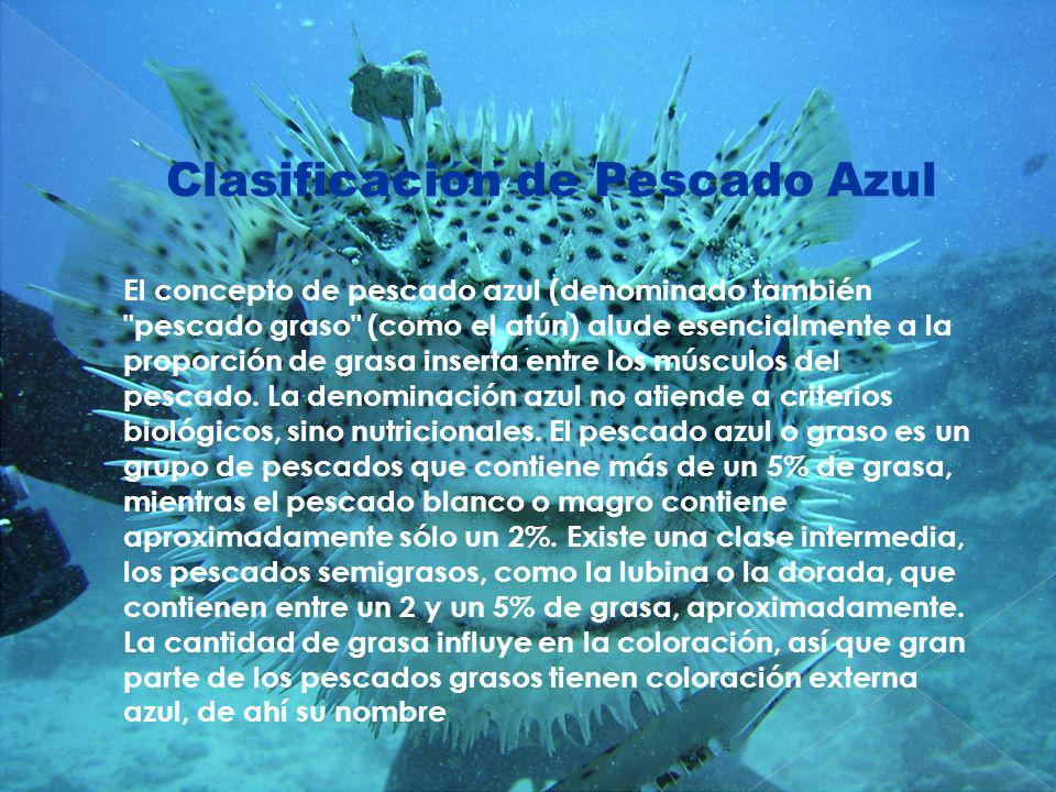 Clasificación de Pescado Azul