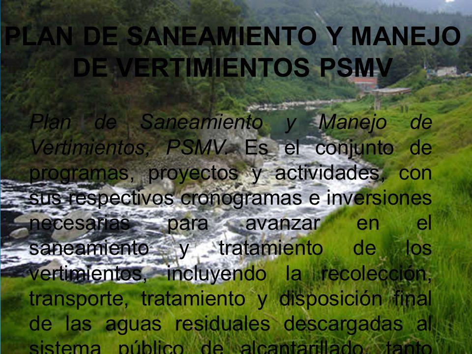 PLAN DE SANEAMIENTO Y MANEJO