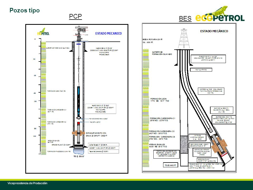 Pozos tipo PCP BES Vicepresidencia de Producción