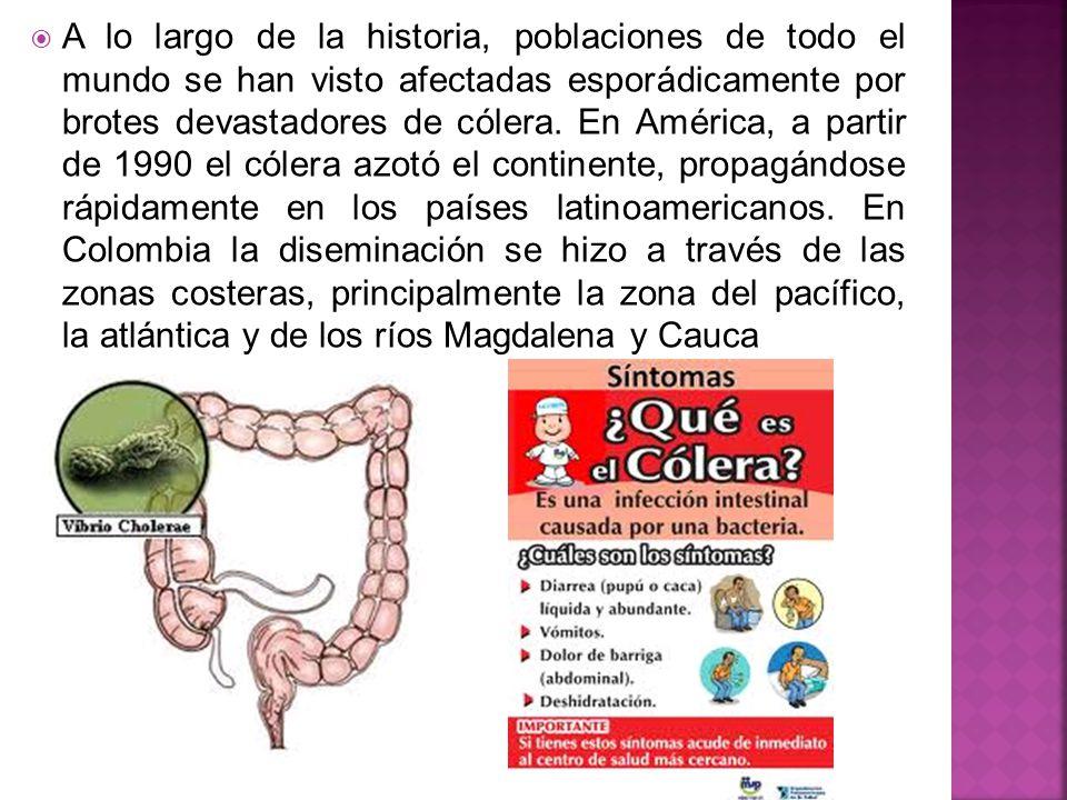 A lo largo de la historia, poblaciones de todo el mundo se han visto afectadas esporádicamente por brotes devastadores de cólera.