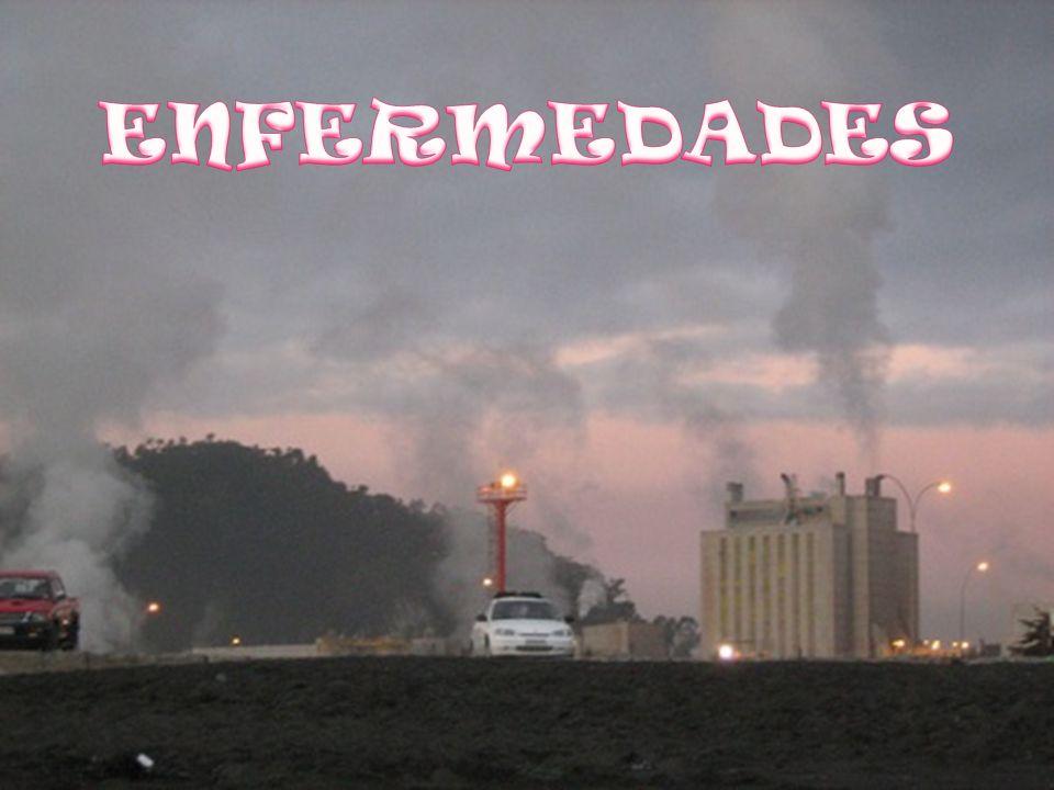 ENFERMEDADES – MEDIO AMBIENTE