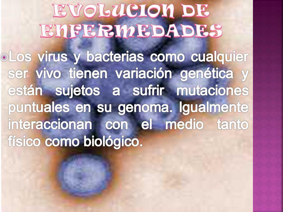 EVOLUCION DE ENFERMEDADES