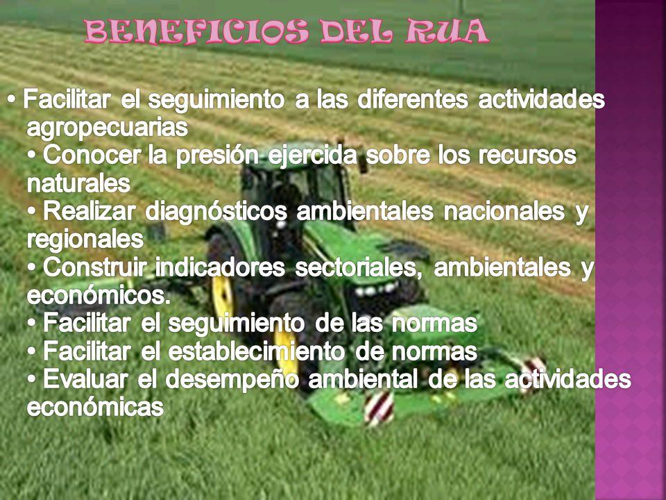 BENEFICIOS DEL RUA