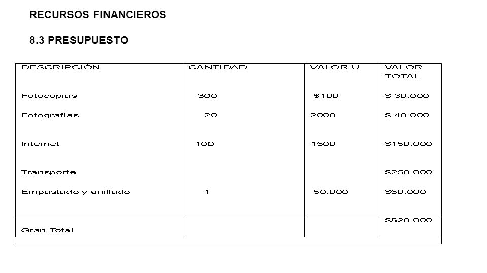 RECURSOS FINANCIEROS 8.3 PRESUPUESTO
