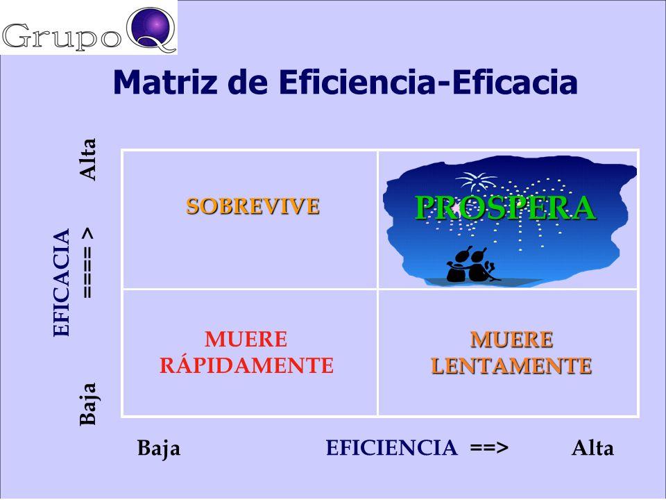 Matriz de Eficiencia-Eficacia