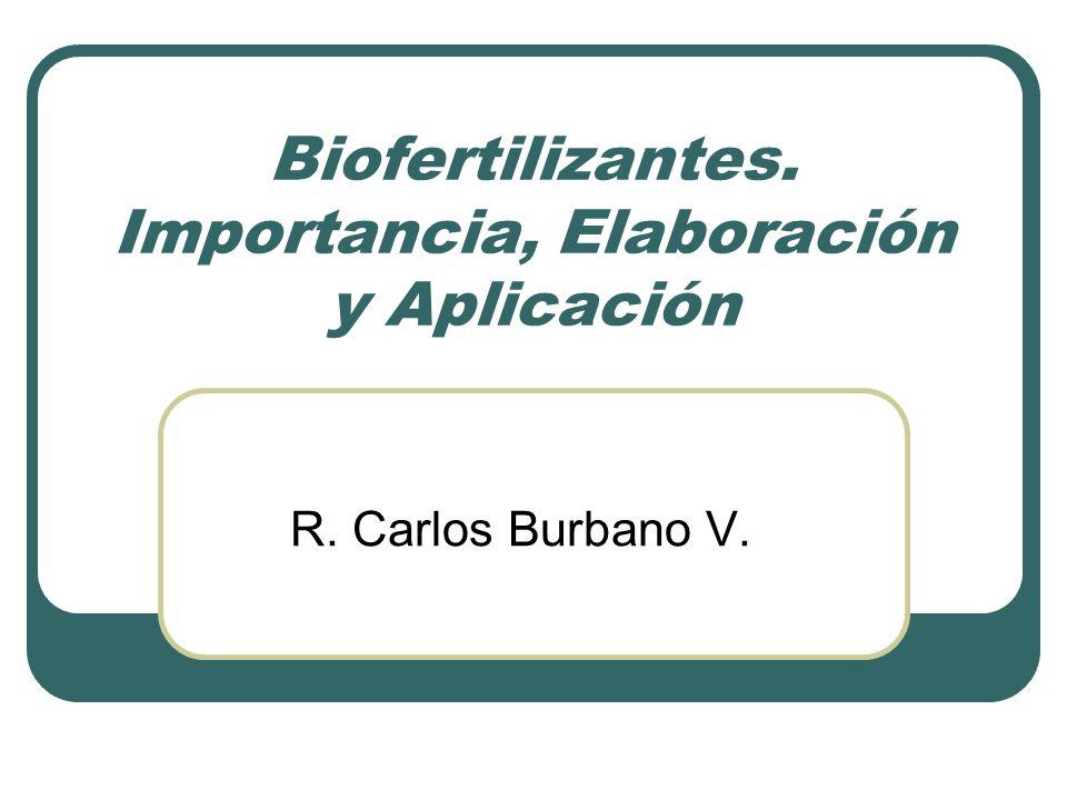 Biofertilizantes. Importancia, Elaboración y Aplicación