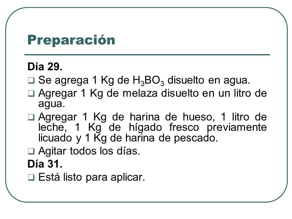 Preparación Día 29. Se agrega 1 Kg de H3BO3 disuelto en agua.
