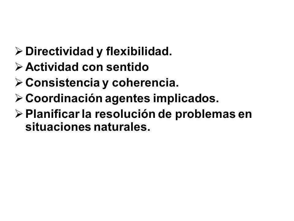 Directividad y flexibilidad.