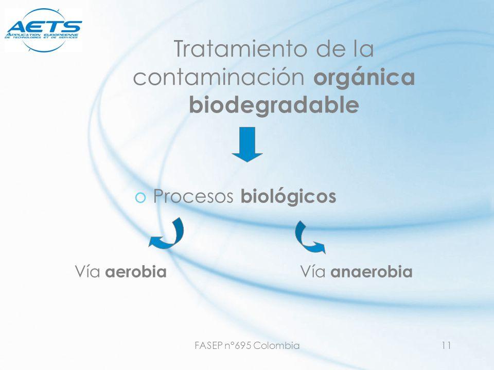 Tratamiento de la contaminación orgánica biodegradable