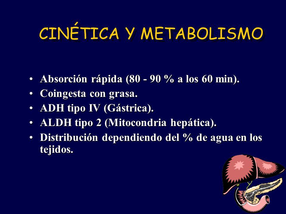 CINÉTICA Y METABOLISMO