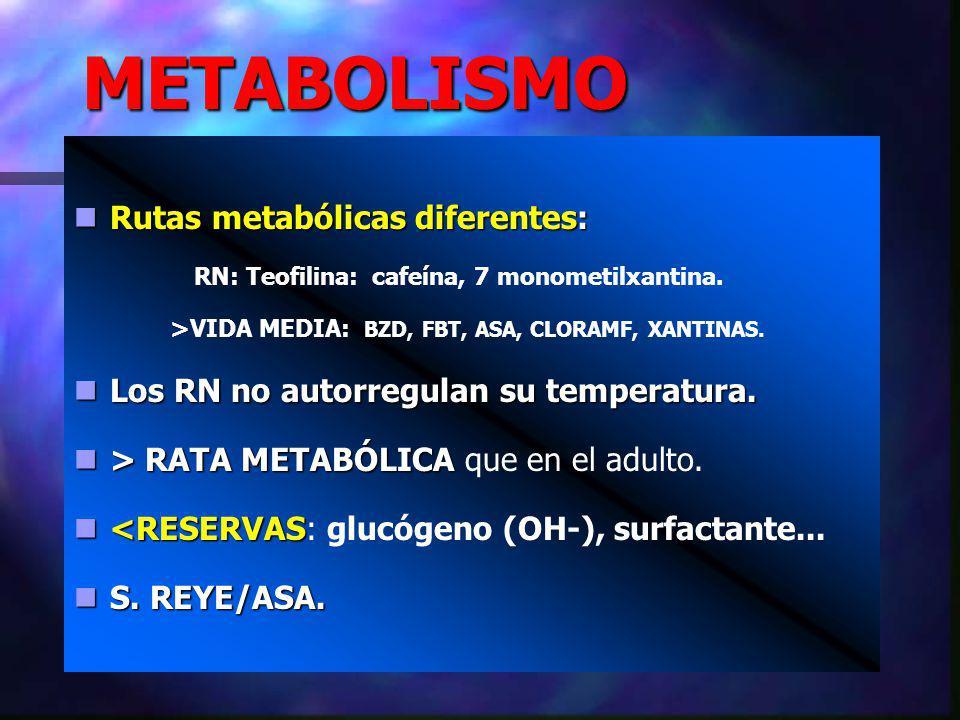 METABOLISMO Rutas metabólicas diferentes: