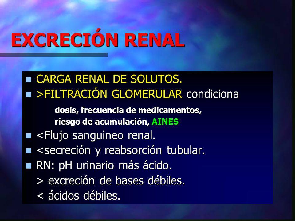 EXCRECIÓN RENAL CARGA RENAL DE SOLUTOS.