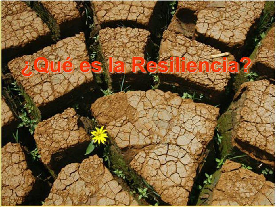 ¿Qué es la Resiliencia