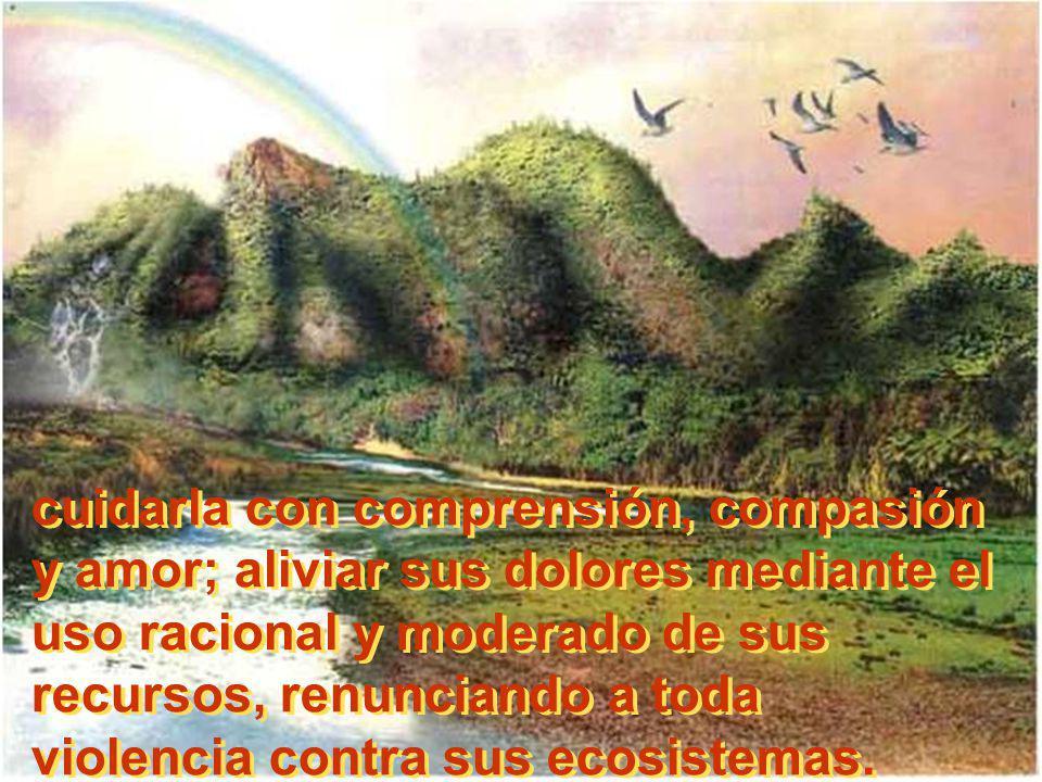 cuidarla con comprensión, compasión y amor; aliviar sus dolores mediante el uso racional y moderado de sus recursos, renunciando a toda violencia contra sus ecosistemas.