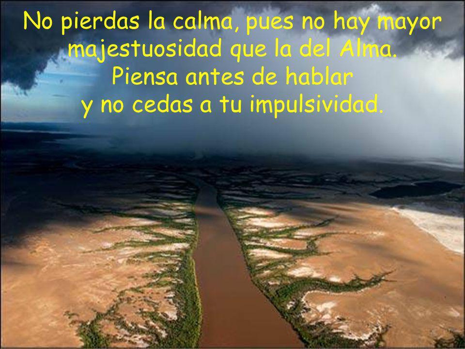 No pierdas la calma, pues no hay mayor majestuosidad que la del Alma