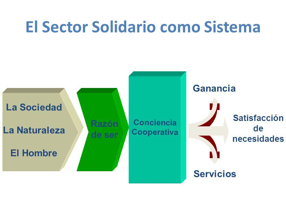 El Sector Solidario como Sistema