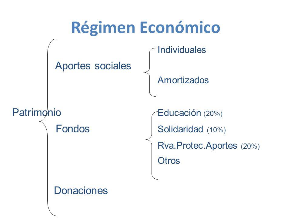 Régimen Económico Individuales Aportes sociales Amortizados