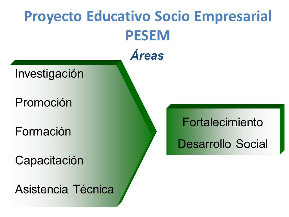 Proyecto Educativo Socio Empresarial PESEM