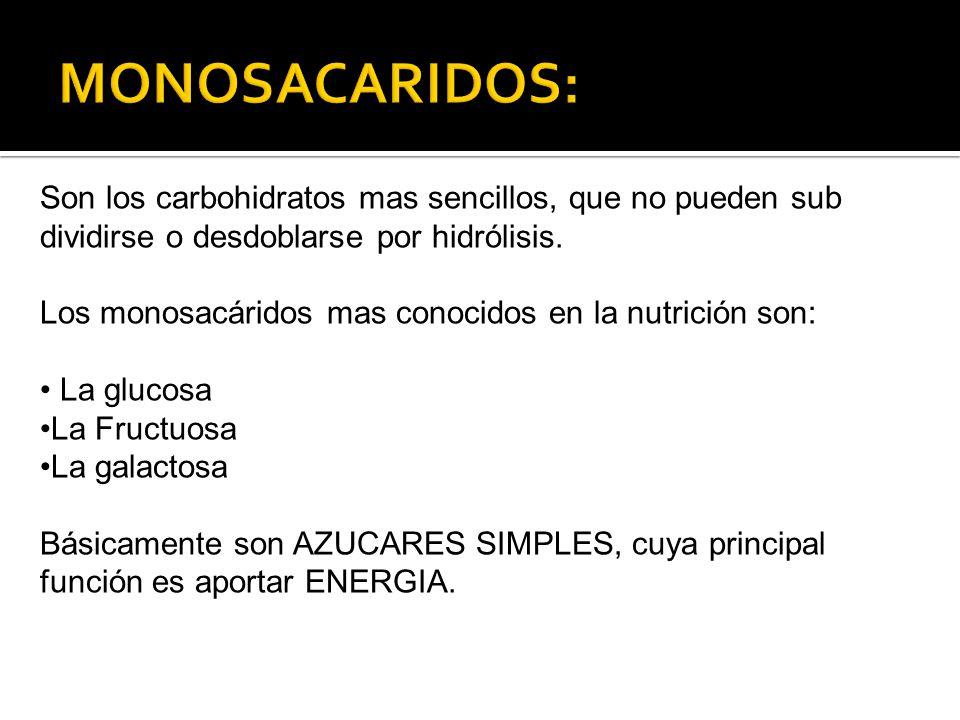 MONOSACARIDOS: Son los carbohidratos mas sencillos, que no pueden sub dividirse o desdoblarse por hidrólisis.