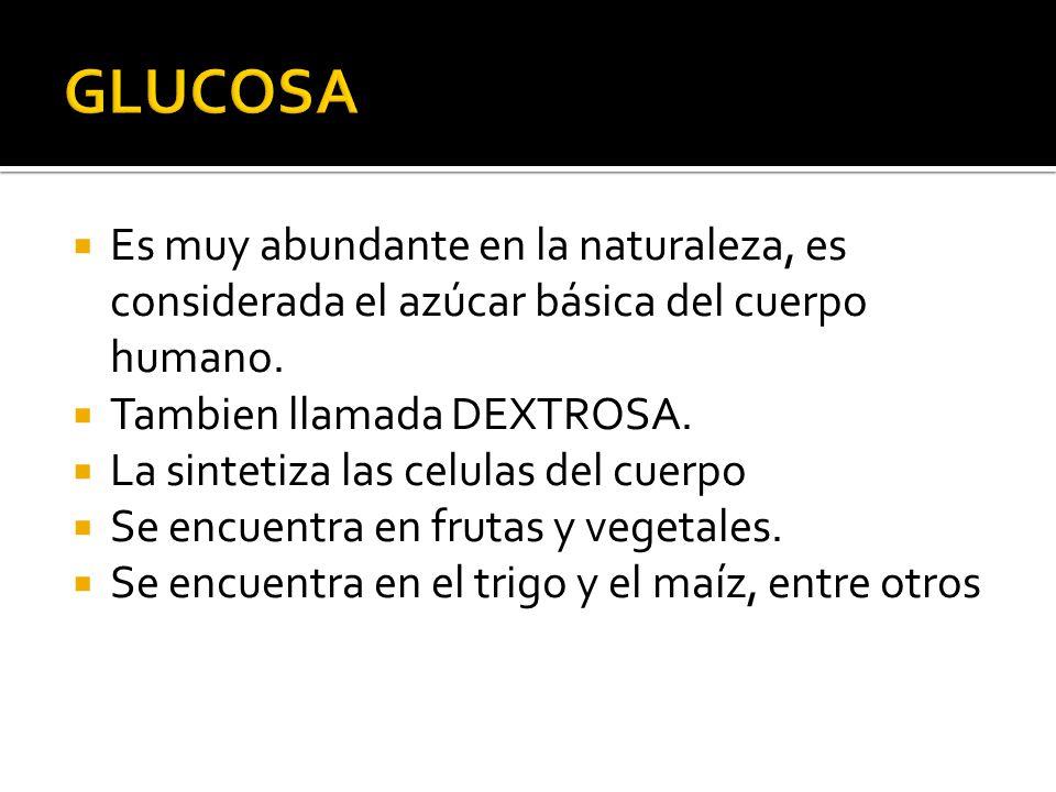GLUCOSA Es muy abundante en la naturaleza, es considerada el azúcar básica del cuerpo humano. Tambien llamada DEXTROSA.