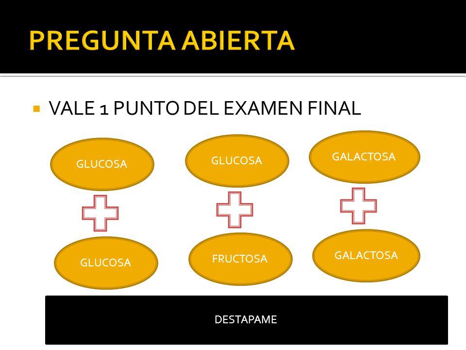 PREGUNTA ABIERTA VALE 1 PUNTO DEL EXAMEN FINAL GALACTOSA GLUCOSA