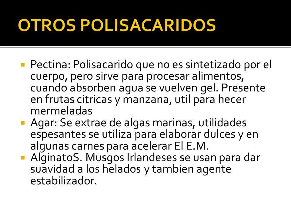 OTROS POLISACARIDOS