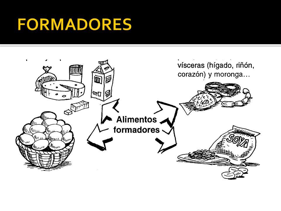 FORMADORES