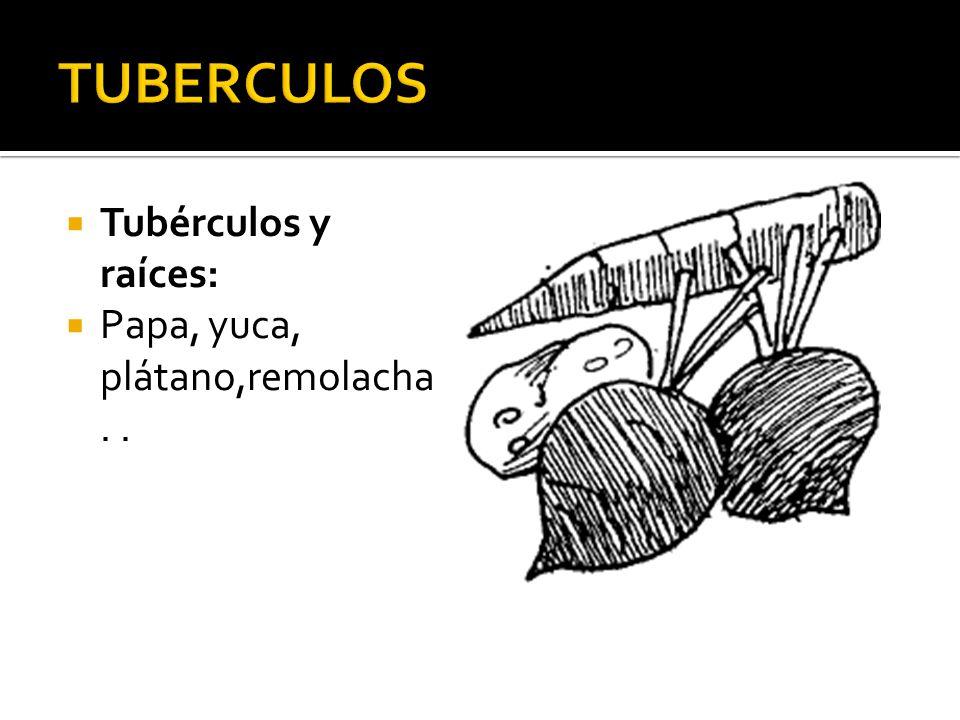 TUBERCULOS Tubérculos y raíces: Papa, yuca, plátano,remolacha . .