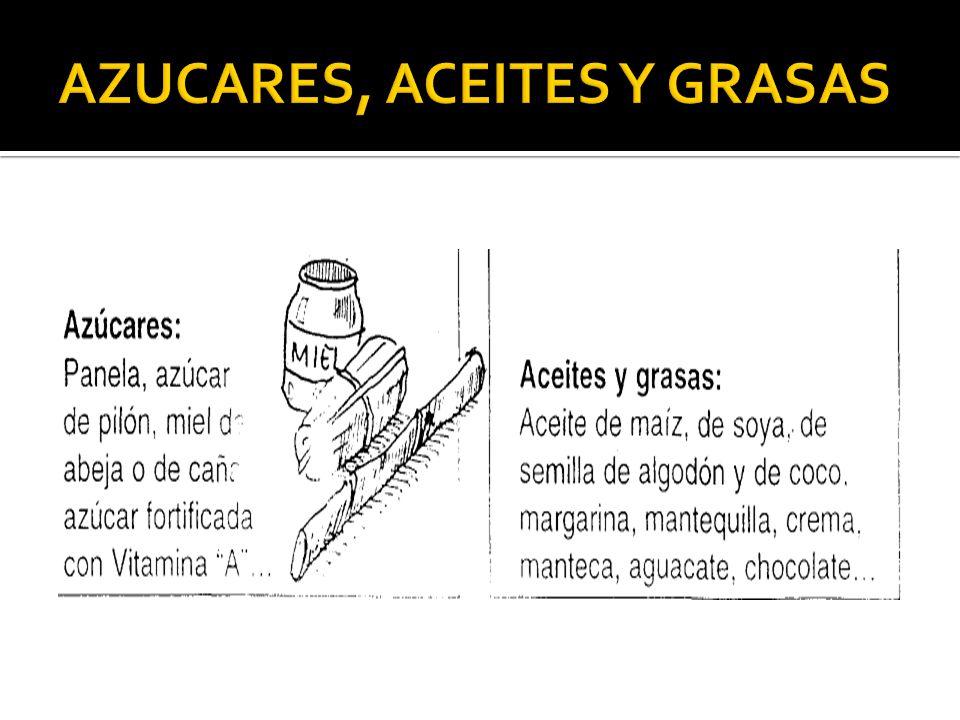 AZUCARES, ACEITES Y GRASAS