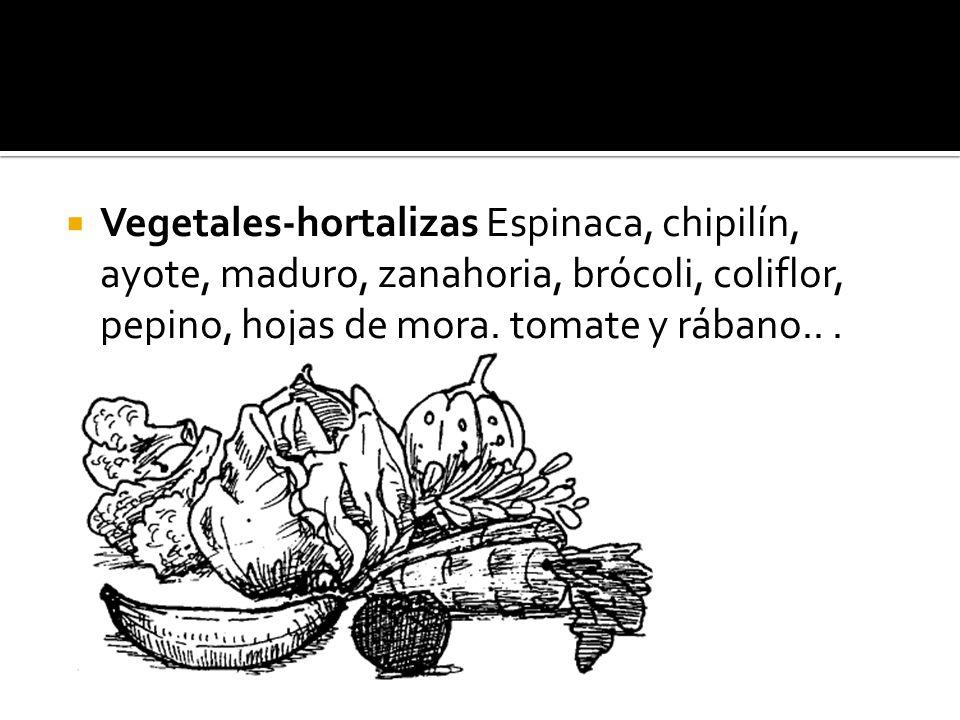 Vegetales-hortalizas Espinaca, chipilín, ayote, maduro, zanahoria, brócoli, coliflor, pepino, hojas de mora.