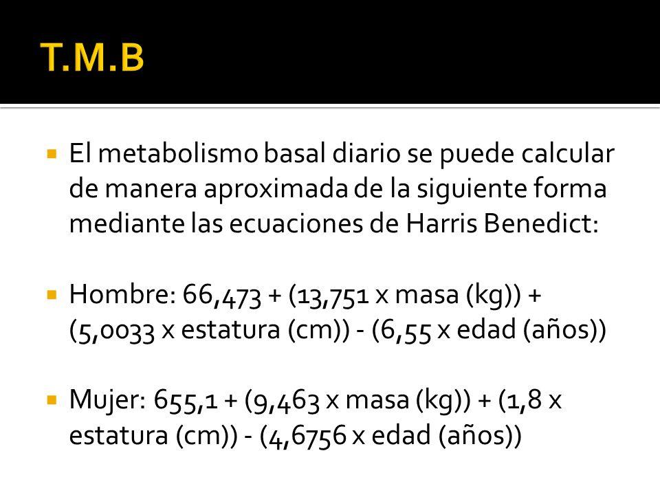 T.M.B El metabolismo basal diario se puede calcular de manera aproximada de la siguiente forma mediante las ecuaciones de Harris Benedict: