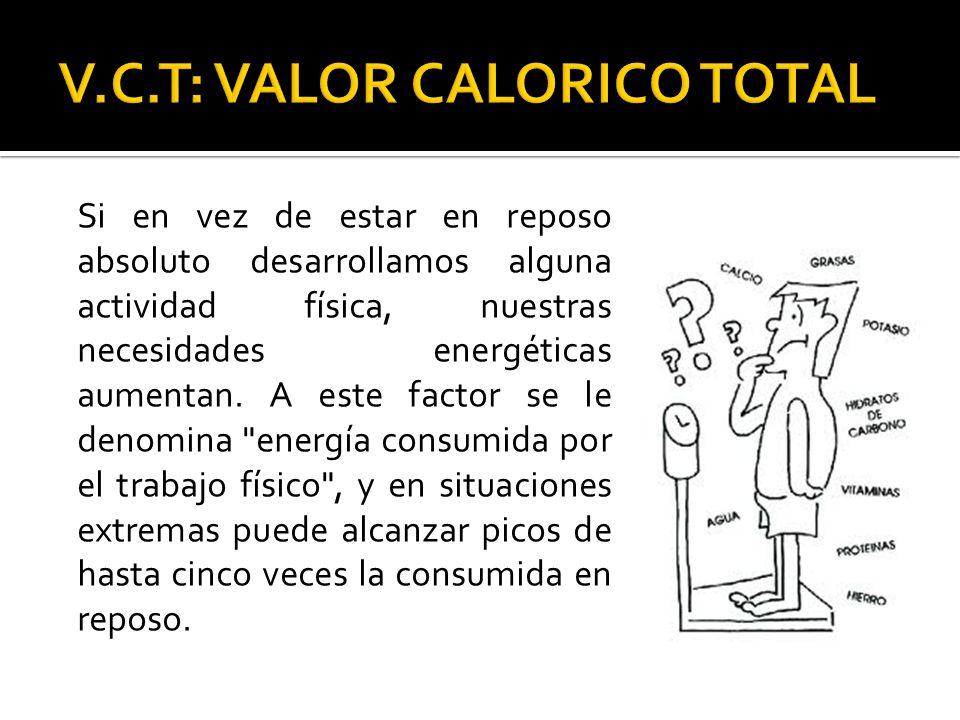 V.C.T: VALOR CALORICO TOTAL