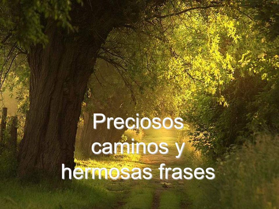 Preciosos caminos y hermosas frases