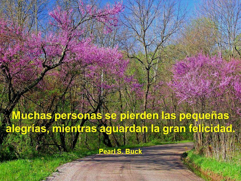 Muchas personas se pierden las pequeñas alegrías, mientras aguardan la gran felicidad.