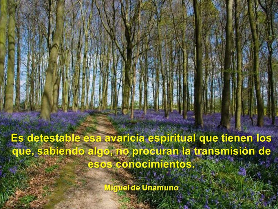Es detestable esa avaricia espiritual que tienen los que, sabiendo algo, no procuran la transmisión de esos conocimientos.