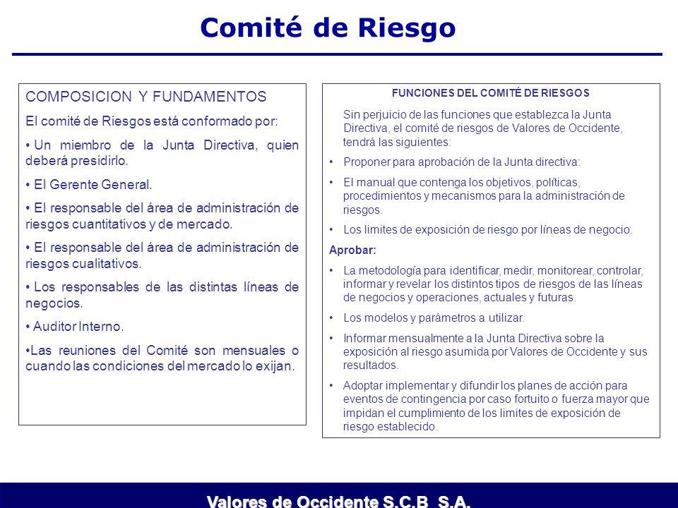 FUNCIONES DEL COMITÉ DE RIESGOS