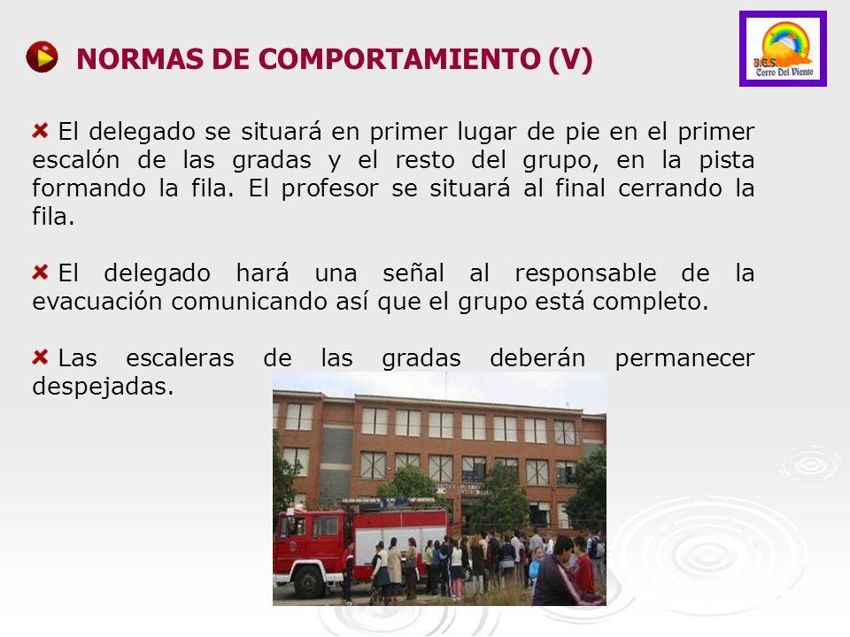 NORMAS DE COMPORTAMIENTO (V)