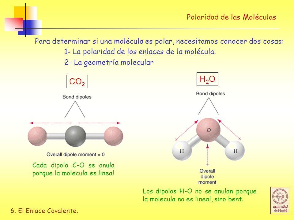 H2O CO2 Polaridad de las Moléculas