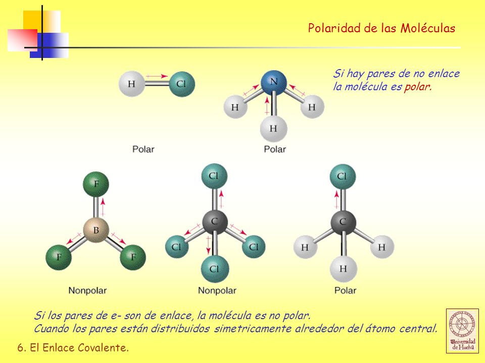 Polaridad de las Moléculas