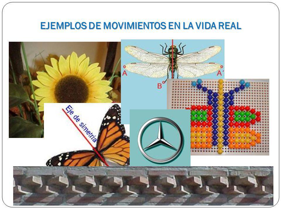 EJEMPLOS DE MOVIMIENTOS EN LA VIDA REAL