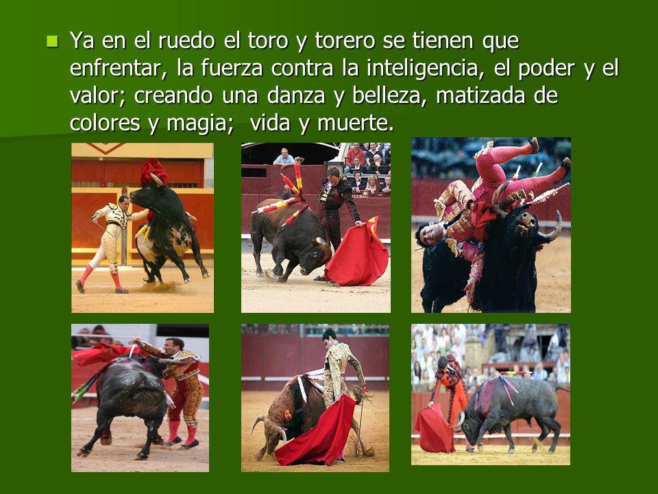 Ya en el ruedo el toro y torero se tienen que enfrentar, la fuerza contra la inteligencia, el poder y el valor; creando una danza y belleza, matizada de colores y magia; vida y muerte.