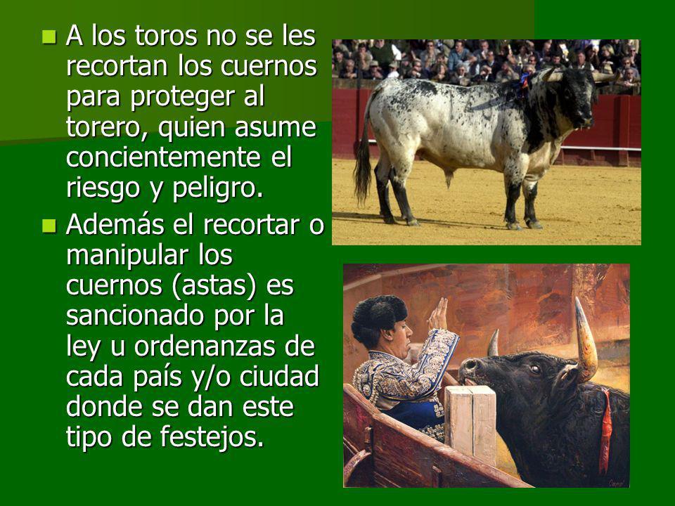 A los toros no se les recortan los cuernos para proteger al torero, quien asume concientemente el riesgo y peligro.